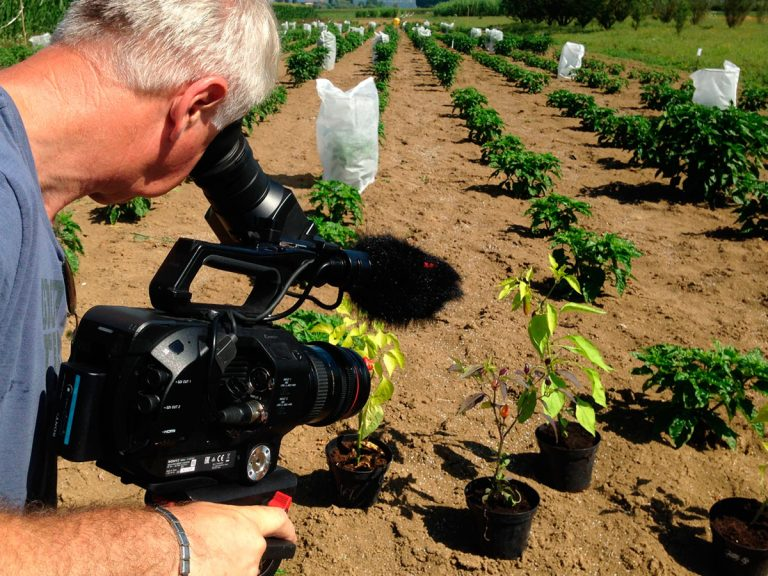 Produzione video per progetti di sostenibilità