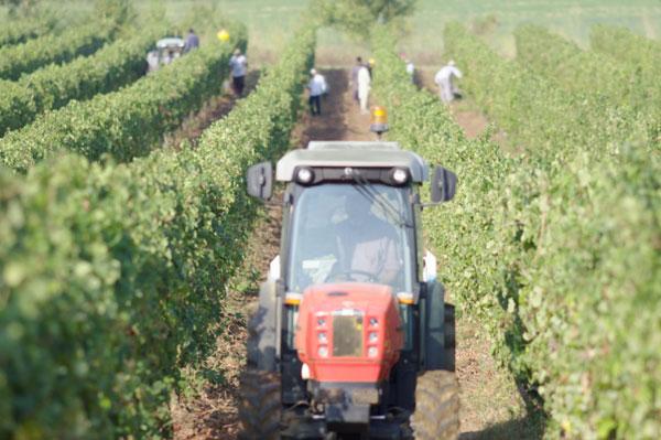 Servizi di produzione video per aziende agricole